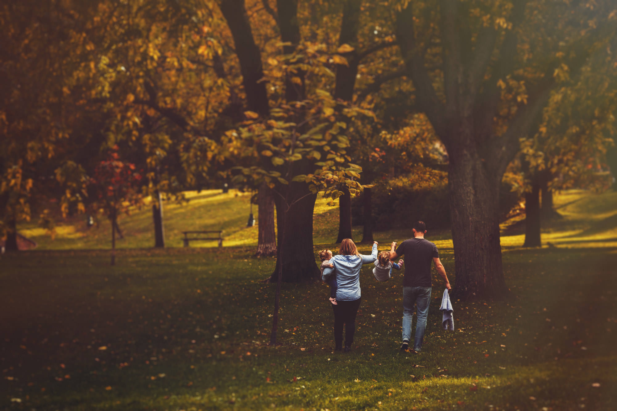young family walks through park on fall day in toronto