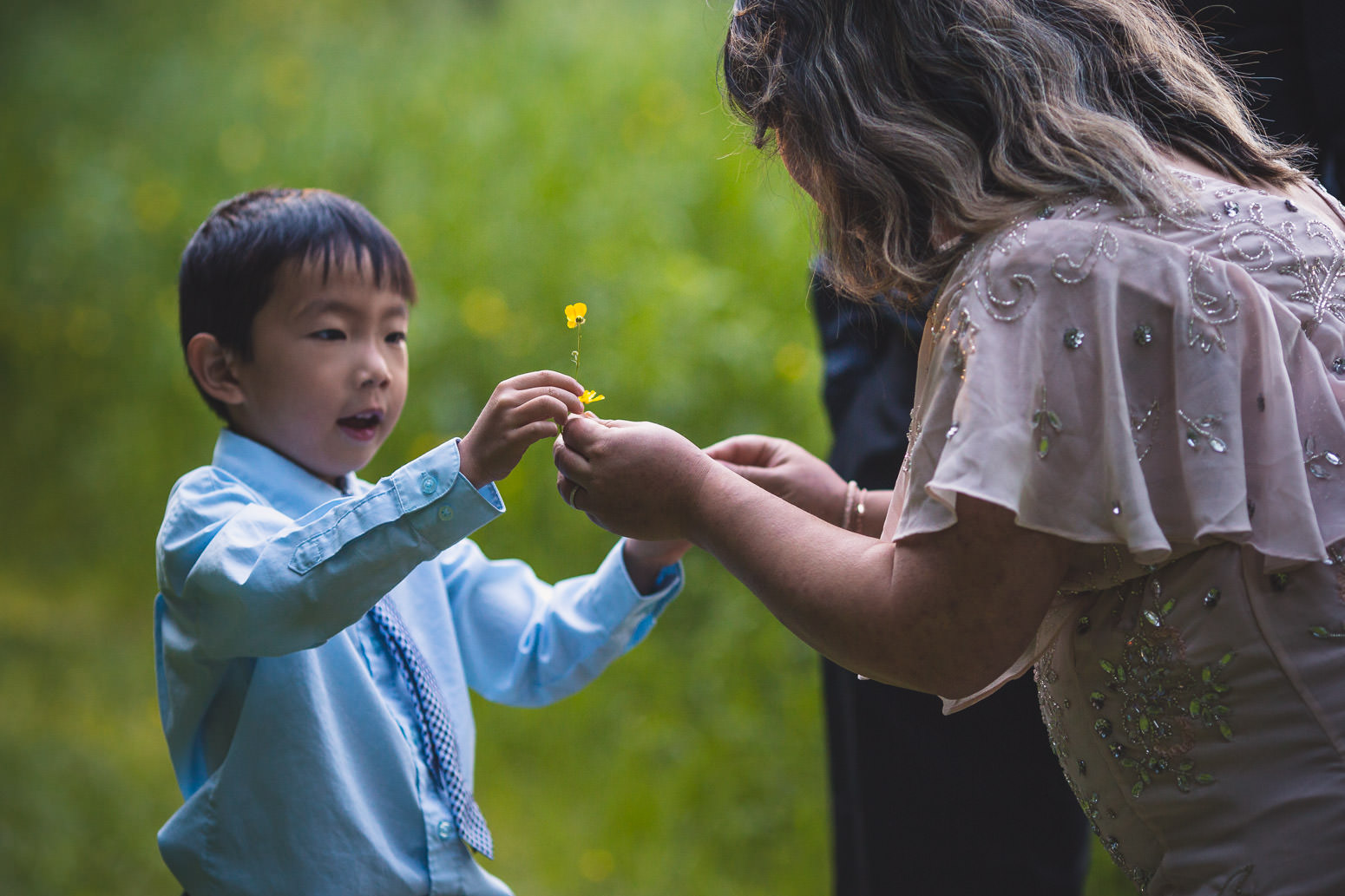 Little boy giving flowers to his mother
